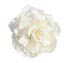 Rent Hair Accessory - Silk Flower - Duchess 45 | Rent for $25.00